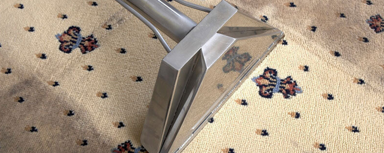 Best Rug Cleaning South Yarra